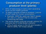 consumption at the primary producer level plants