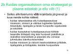 2b kuidas organisatsioon oma strateegiat ja plaane edastab ja ellu viib 1