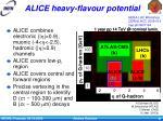alice heavy flavour potential