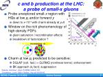 c and b production at the lhc a probe of small x gluons