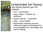 contaminated soil cleanup