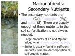 macronutrients secondary nutrients