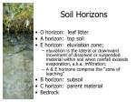 soil horizons1