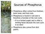sources of phosphorus