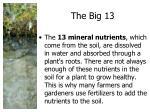 the big 13