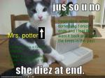 mrs potter