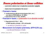 beams polarization at linear colliders