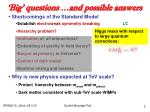 big questions and possible answers