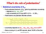 what s the role of polarization