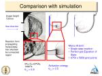 comparison with simulation1