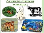 os animais fornecem alimentos