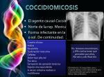 coccidiomicosis