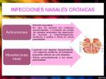 infecciones nasales cr nicas2