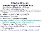 flagship strategy 1