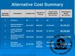alternative cost summary