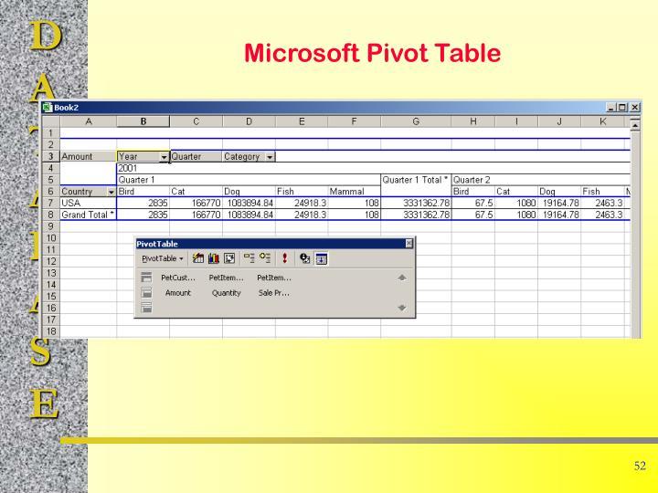 Microsoft Pivot Table