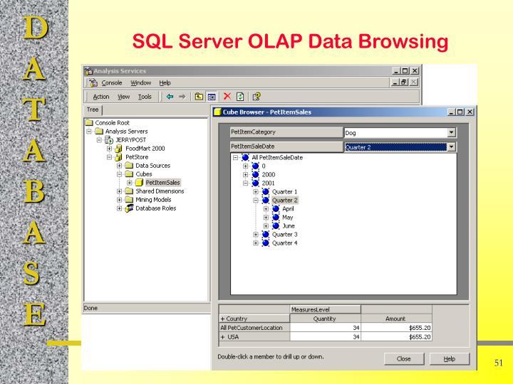 SQL Server OLAP Data Browsing