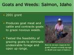 goats and weeds salmon idaho