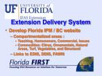 extension delivery system