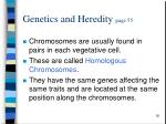 genetics and heredity page 55