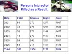 persons injured or killed as a result
