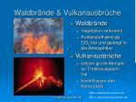 waldbr nde vulkanausbr che