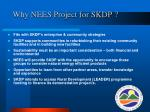 why nees project for skdp