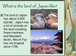 what is the land of japan like