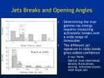 jets breaks and opening angles