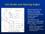 jets breaks and opening angles1