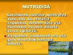 nutrizioa