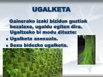 ugalketa