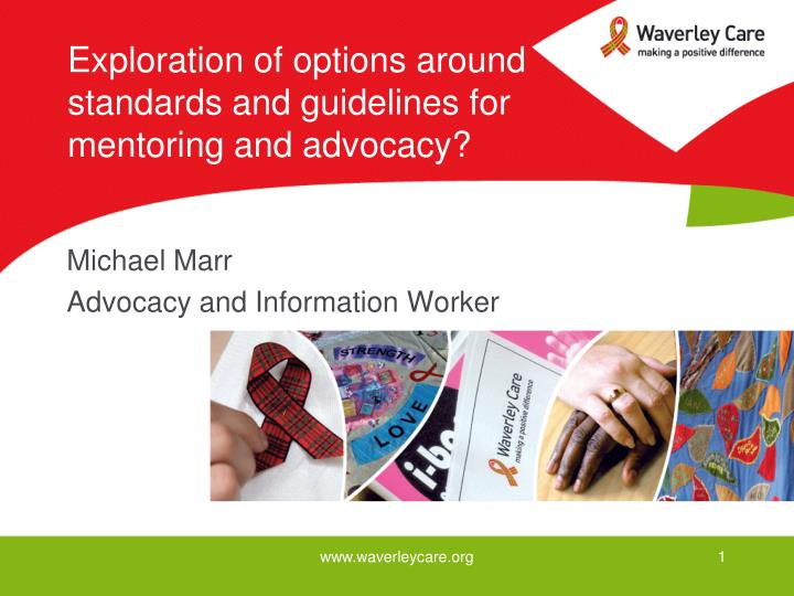 exploration of options around standards and guidelines for mentoring and advocacy n.