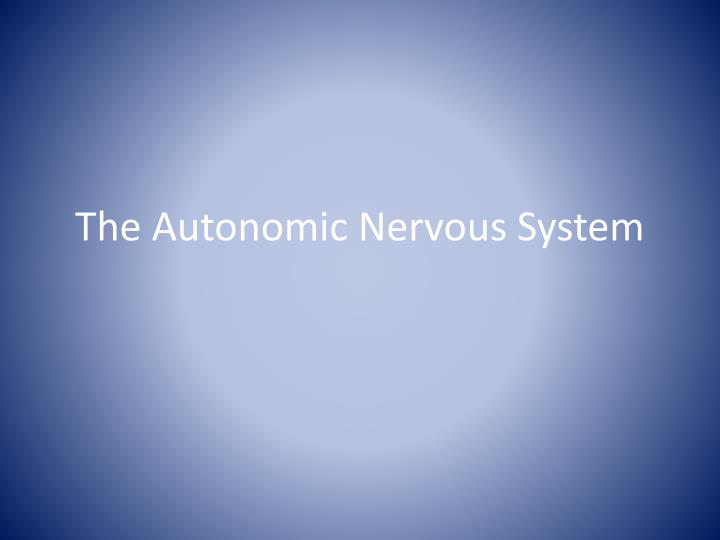 the autonomic nervous system n.