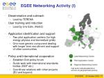 egee networking activity i
