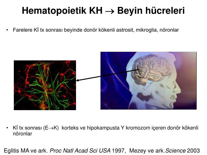Hematopoietik KH
