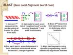 blast basic local alignment search tool1