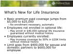 what s new for life insurance