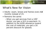 what s new for vision