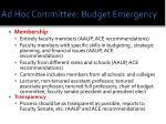 ad hoc committee budget emergency1