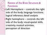 review of the brain structure functions