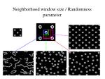 neighborhood window size randomness parameter
