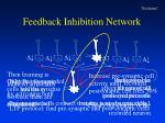 feedback inhibition network