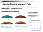 material damage geant4 fluka