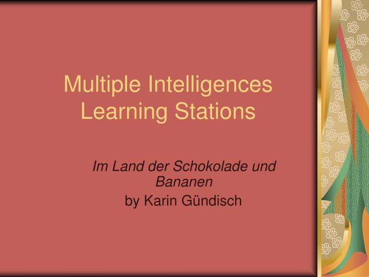 multiple intelligences learning stations n.