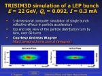trisim3d simulation of a lep bunch e 22 gev q s 0 092 i 0 3 ma