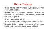 renal travma