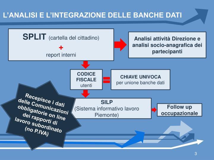 L'ANALISI E L'INTEGRAZIONE DELLE BANCHE DATI