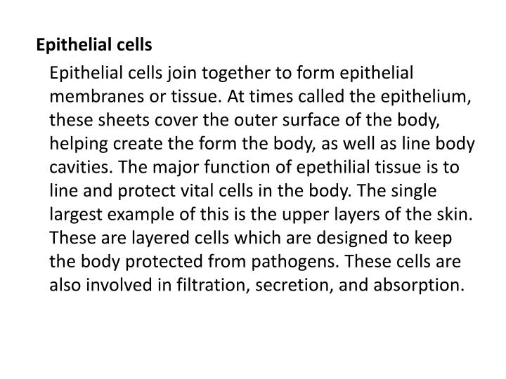 Epithelial cells