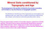 mineral soils conditioned by topography and age